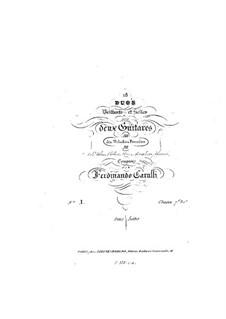 Neun Duette nach Themen von verschiedenen Komponisten für zwei Gitarren: Neun Duette nach Themen von verschiedenen Komponisten für zwei Gitarren by Ferdinando Carulli