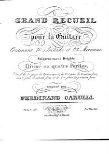 Grosse Sammlung für Gitarre: Grosse Sammlung für Gitarre by Ferdinando Carulli