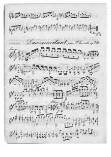 Grosses Konzertduett für Gitarre und Violine, Op.328: Grosses Konzertduett für Gitarre und Violine by Ferdinando Carulli