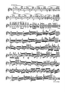 Vierundzwanzig Capricen, Op.1: Capricen Nr.20-24 by Niccolò Paganini