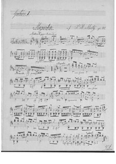 Mazurka und Einsiedlers Waldglöcklein für zwei Gitarren: Stimmen by Johann Kaspar Mertz