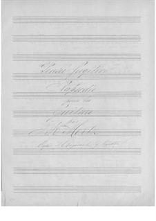 Rhapsodie 'Pensée fugitive': Rhapsodie 'Pensée fugitive' by Johann Kaspar Mertz