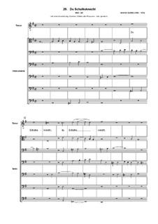 Geistliche Chormusik, Op.11: Nr.29 Du Schalksknecht, SWV 397 by Heinrich Schütz