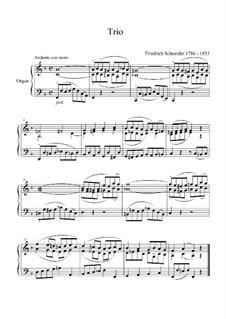 Trio für Orgel: Trio für Orgel by Friedrich Schneider