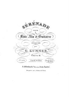 Serenade für Flöte, Bratsche und Gitarre, Op.81: Serenade für Flöte, Viola und Gitarre by Josef Küffner