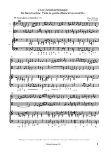 Zwei Choralbearbeitungen  für Barockvioline, Viola da gamba, Op.95: Vollpartitur by Klaus Miehling