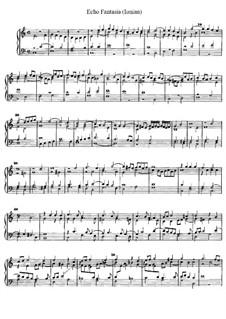 Echo Fantasie für Orgel, D.1: Echo Fantasie für Orgel by Jan Pieterszoon Sweelinck