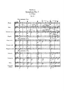 Sinfonien Nr.7-9, Op.92, 93, 125: Sinfonien Nr.7-9 by Ludwig van Beethoven
