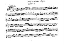 Alles fühlt der Liebe Freuden: Kleine Flöte by Wolfgang Amadeus Mozart