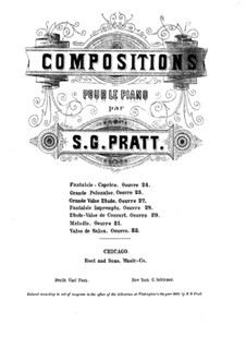 Grosse Walzer-Etüde, Op.27: Grosse Walzer-Etüde by Silas Gamaliel Pratt