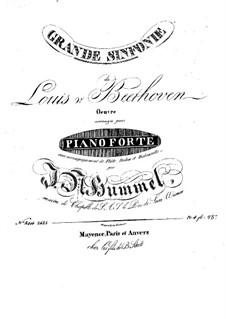 Vollständiger Sinfonie: Version für Flöte, Violine, Cello and Klavier – Stimmen by Ludwig van Beethoven