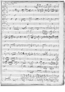 Stabat Mater, Hob.XXa/1: No.5 Vidit suum dulcem natum by Joseph Haydn