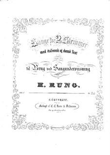 Lieder für zwei Stimmen, Gitarre und Klavier: Lieder für zwei Stimmen, Gitarre und Klavier by Henrik Rung