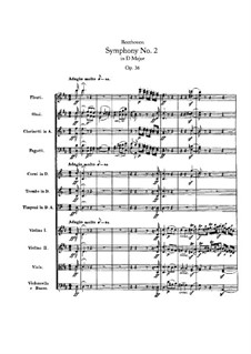 Sinfonie Nr.2, Op.36: Teil I by Ludwig van Beethoven