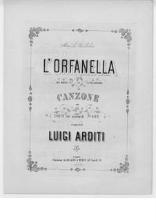 Die Waise: Die Waise by Luigi Arditi