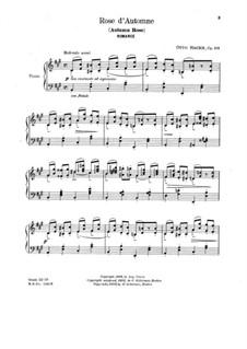 Romanze 'Rose d'automne' für Klavier, Op.105: Romanze 'Rose d'automne' für Klavier by Otto Christoph Hackh