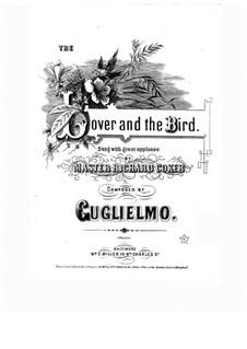 The Lover and the Bird: The Lover and the Bird by P. D. Guglielmo