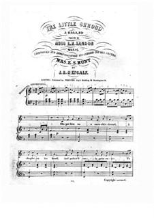 The Little Shroud: The Little Shroud by Isaac Newton Metcalf