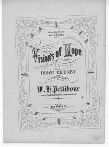 Vision's of Hope: Vision's of Hope by W. H. Pettibone