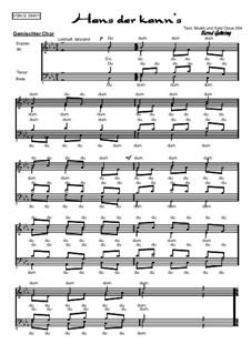 Hans der kann's, Op.354: Hans der kann's by Bernd Gehring