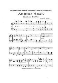 American Beauty: American Beauty by Harry H. Zickel
