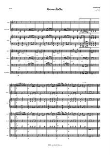 Annen Polka, Op.137: Version for salon orchestra by Johann Strauss (Vater)