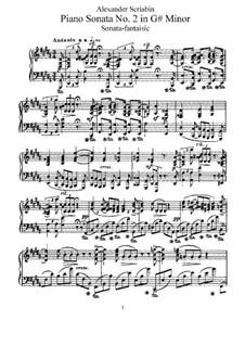 Sonate für Klavier Nr.2, Op.19: Für einen Interpreten by Alexander Skrjabin