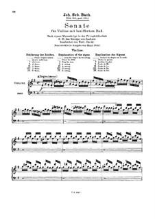 Sonate für Violine und Basso Continuo in e-Moll, BWV 1023: Solostimme by Johann Sebastian Bach