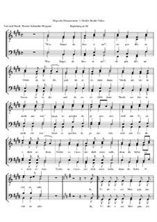 Magische Dimensionen, Op.29: Nr.1 Großer Bruder Video by Werner Schneider-Wiegand