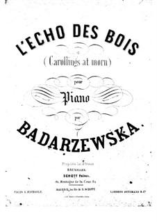 L'écho des bois: L'écho des bois by Tekla Bądarzewska-Baranowska