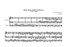 Choralvorspiele II (Schübler Chorales): Meine Seele erhebt den Herren, für Orgel, BWV 648 by Johann Sebastian Bach