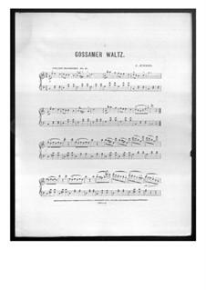 Gossamer Waltz: Gossamer Waltz by Charles Kinkel