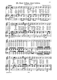 Drei Lilien: Für Stimme und Klavier by folklore