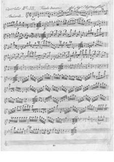 Zwei Quartette für Flöte und Streicher in G-Dur und C-Dur: Zwei Quartette für Flöte und Streicher in G-Dur und C-Dur by Franz Anton Hoffmeister