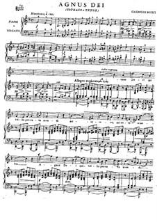 Agnus Dei: Klavierauszug mit Singstimmen by Georges Bizet