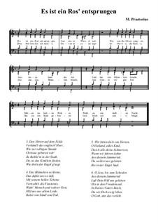 Es ist ein Ros entsprungen: Singpartitur (F-Dur) by Michael Praetorius