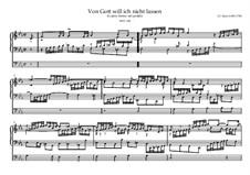 Choralvorspiele III (Leipziger Choräle): Von Gott will ich nicht lassen, BWV 658 by Johann Sebastian Bach
