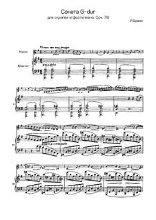 Sonate für Violine und Klavier Nr.1 in G-Dur, Op.78: Teil I by Johannes Brahms