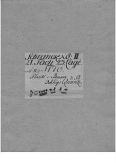 Triosonate für zwei Flöten und Basso Continuo in D-Dur, QV 2:12: Triosonate für zwei Flöten und Basso Continuo in D-Dur by Johann Joachim Quantz