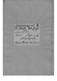 Triosonate für zwei Flöten und Basso Continuo in D-Dur, QV 2:7: Triosonate für zwei Flöten und Basso Continuo in D-Dur by Johann Joachim Quantz