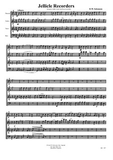 Jellicle Catgut: SATB recorders by David W Solomons