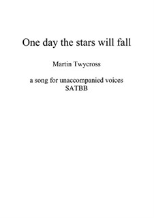 One day the stars will fall: One day the stars will fall by Martin Twycross