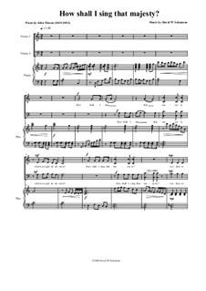 How shall I sing that Majesty: Für Chor und Klavier by David W Solomons
