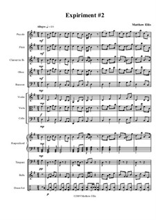Expiriment No.2: Vollpartitur by Matthew Ellis