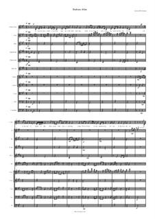Barbara Allen for Voice and Orchestra: Barbara Allen for Voice and Orchestra by folklore, David W Solomons