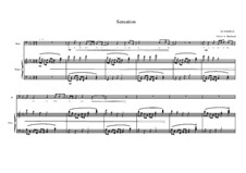 Song for Bass and piano No.7 on a poem of Arthur Rimbaud, MVWV 204: Song for Bass and piano No.7 on a poem of Arthur Rimbaud by Maurice Verheul