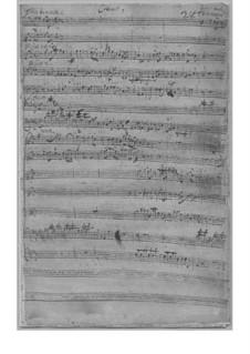 Konzert für zwei Flöten und Orchester in h-Moll, TWV 53:h1: Konzert für zwei Flöten und Orchester in h-Moll by Georg Philipp Telemann