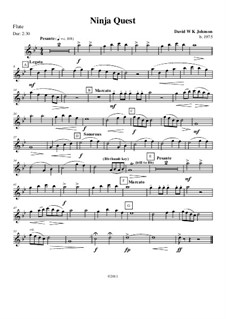 Ninja Quest (Grade 1 - Concert Band): Ninja Quest (Grade 1 - Concert Band) by David WK Johnson