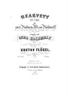 Streichquartett Nr.1 in a-Moll, Op.23: Streichquartett Nr.1 in a-Moll by Gustav Flügel