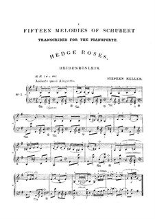 Fifteen Melodies for Piano: Fifteen Melodies for Piano by Franz Schubert